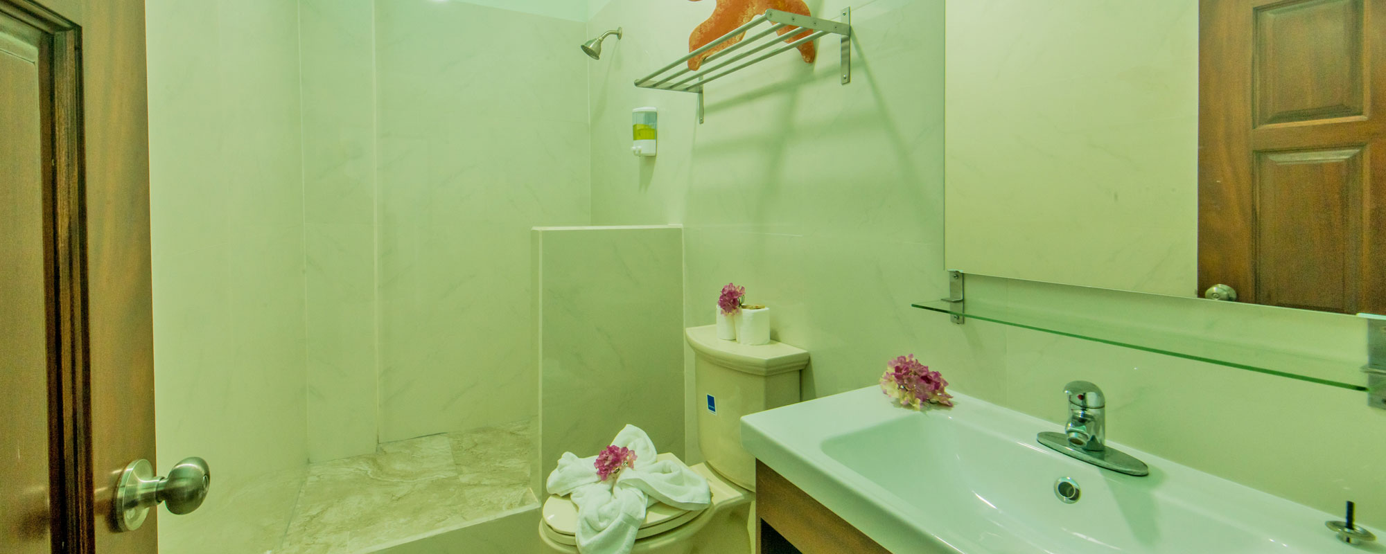 Premium-Ocean-View-Bathroom